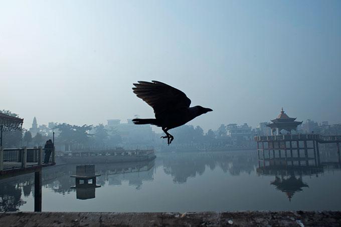 Photo: Sagar Chhetri